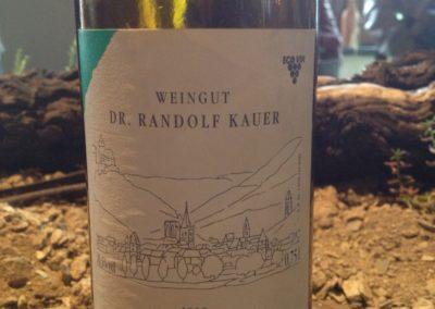 Dr. Kauer 3
